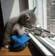 おもろ☆猫
