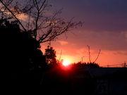 夕日が大好き