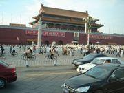 中国 国産車フリーク