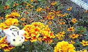 *Flower&Bee*