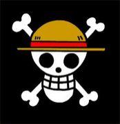 §大海賊時代§