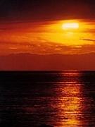Sunset Never Fall