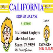 California Driver License☆