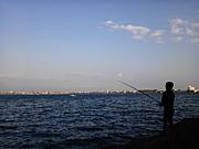 日美釣り部