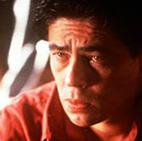 Benicio Del Toro��