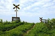LOVE いすみ鉄道