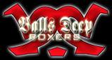 Balls Deep Boxers(BDB)