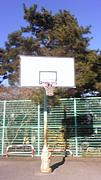 船橋運動公園ストリートバスケ