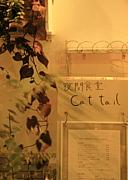 ★夜間食堂Cattail★(閉店)