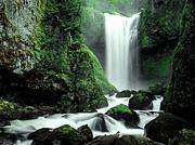 日本の水源を外国から守ろう