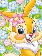 ☆miss Bunny☆