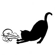 Asthmatic Kitty