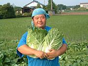白菜が嫌い!!!