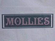 札幌草野球チーム MOLLIES