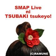 SMAPライブに椿を付けよ♪