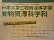 H22NUBS☆動物資源科学科