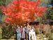Hokkaido Peach
