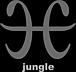 渋谷H-jungle系列
