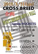 CROSS BREED!