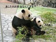 キッズ☆ランチBOX