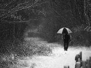 雪の降る中を歩きたい