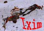 Guildwars mixiギルド 【Ixim】