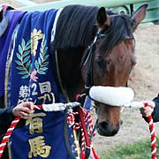 美浦:国枝栄厩舎