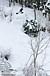 極楽坂スキー場