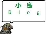小鳥ブログ