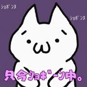 ションボリ(´・ω・`)
