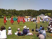 湘南 ☆ ALOHASカーニバル!