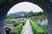 淑女の花園