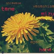 幸せの種、優しさの水、笑顔の花