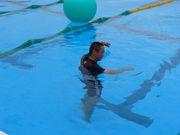日大櫻丘水泳部