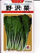 全国の野沢菜