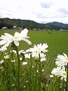 西木村立桧木内中学校