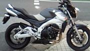 市川のバイク乗り(´∀`)