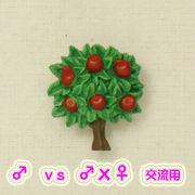 林檎の木  (フリ〜)
