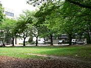 埼玉大学 就職活動部