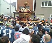 北海道の神輿を担ごう