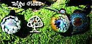 Taiga Glass