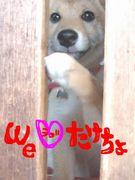 We ♡ たけちょ
