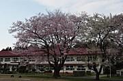 金ケ崎町立第一小学校