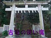 【新生】古竜の使い魔【new!】