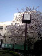 ☆青山学院高等部55期生☆