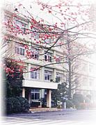 横須賀大津3−3会