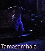 タマサムハラ  コタマサムハラ