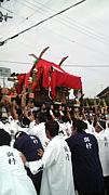 京都で神輿