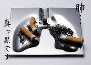 きっと真っ黒・・私の肺。