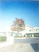 南中1998年度卒業生